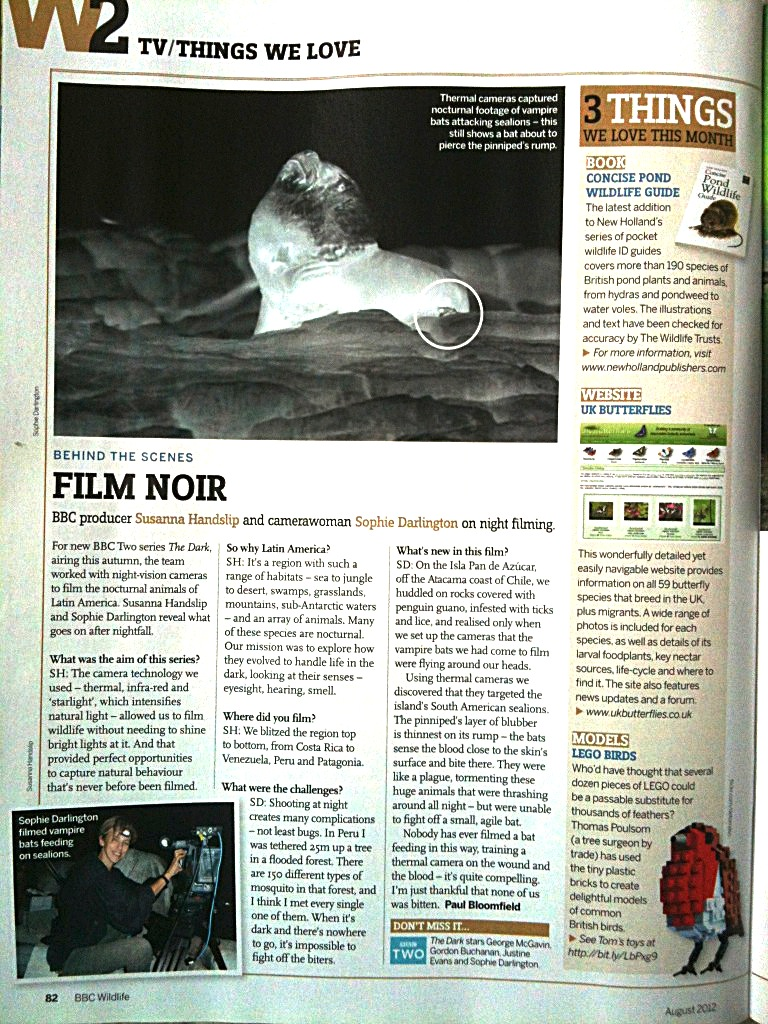 Film Noir BBC Wildlife