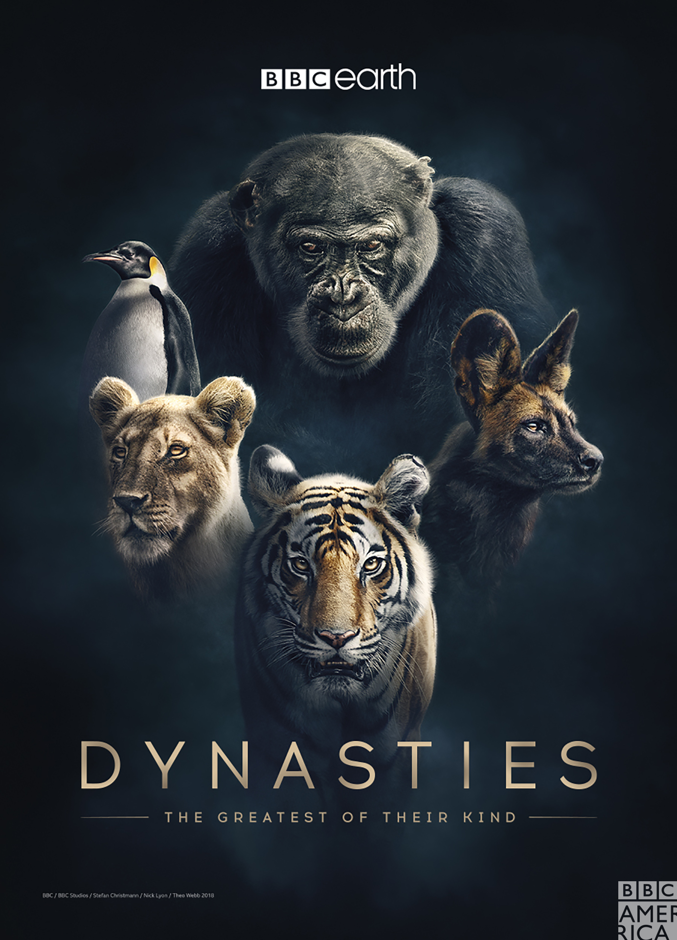Dynasty, Lions